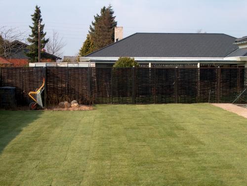 Græsplæne lagt med rullegræs, er færdig