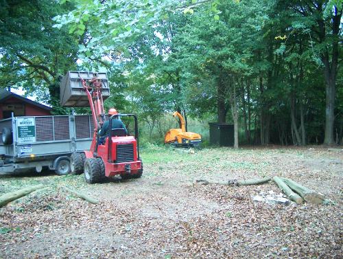 Parkservice; Rydning og klargøring af område