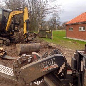 Opgravning og rodfræsning af store rødder og træstubbe