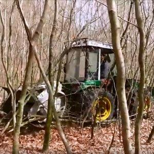 Knusning af træer og opvækst